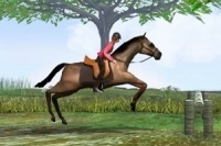 Paardensprong